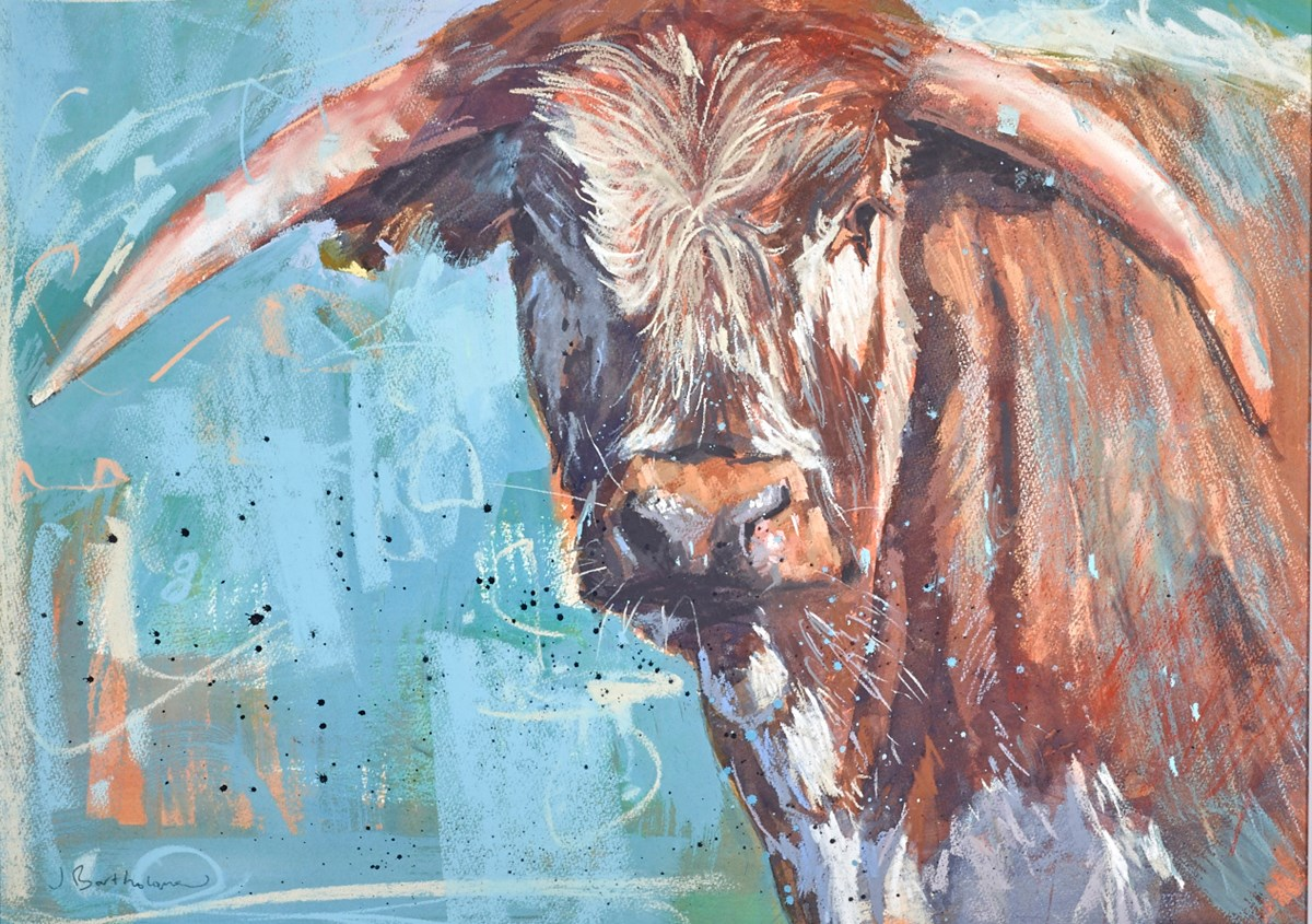 Longhorn by james bartholomew -  sized 28x20 inches. Available from Whitewall Galleries
